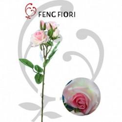 Rose 4F